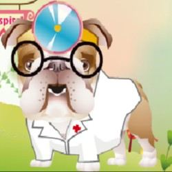 Dr. Bulldog's Pets Hospital Game