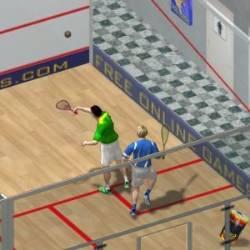 Squash Game