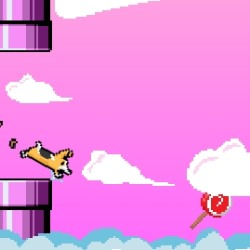 Flappy Corgi Game