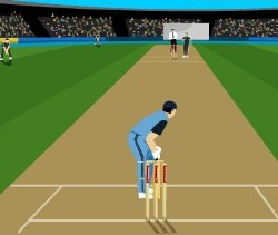 Cricket - Master Blaster Game